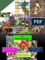 La Biodiverisidad Del Peru