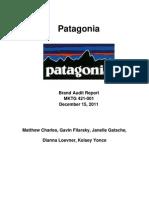 Patagonia Brand Audit