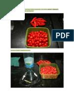 Fazendo pimenta Passo a passo com fotos.pdf
