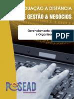 Gerenciamento de Projeto e Organizacao Fgf
