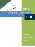 Seminario de Potenciales (1) (1)