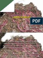 diapositivas lombricultura