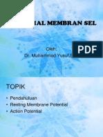 K.P 4.7 Potensial Listrik Membran Sel