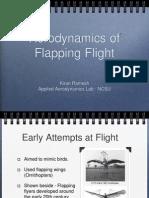 Presentation on Unsteady Aerodynamics