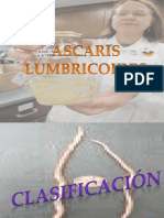 Tema Nº10 Ascaris Lumbricoides