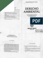 Derecho Ambiental - Fundamentacion y Normativa - Jorge Bustamante Alsina