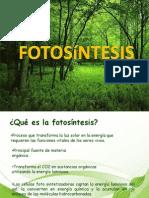 Fotosintesis Original