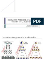 Clonación acelular PCR