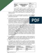 01.ESTÁNDAR BÁSICO DE PdRGA