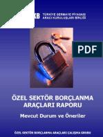 Ozel Sektor Borclanma Araclari Raporu
