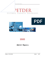 PETDER_2005_SEKTOR_RAPORU