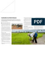 GRiSP AR 2012 - Cambodia's rice field of dreams