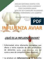 Influenza Aviar 2605 (1) (1)