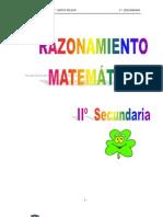 2doSec Raz Matematico Ejercicios