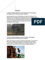 Timber Plantations