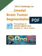 proceedingsBRATS2012.pdf