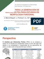 Mejoras para la generación de mallas en FEA para estudios en Morfología Funcional