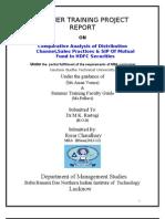hdfc project.doc