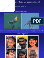 Macro Evolution and Speciation PPT