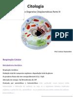 respiraocelular-111018102906-phpapp01