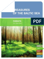 "Treasures of the Baltic Sea - Forest - The ""Green Gold"""