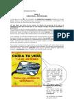 GUIA 8 Publicidad(2010)