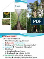 Bab Tumbuhan (Plantae)