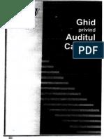 123126666 Ghidul Privind Auditul Calitatii