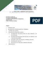 Reanimacion Cardiopulmonar Basica
