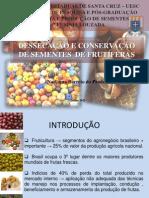 Conservação de sementes recalcitrantes de frutíferas.ppt