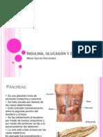Insulina, glucagón y diabetes