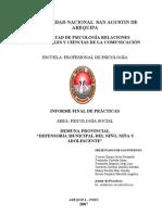 INFORME PSICOLOGIA SOCIAL - DEMUNA 2007.doc