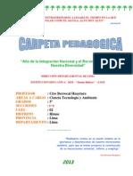 CARPETA PEDAGOGICA 2013 5°