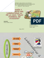 Presentacion Final Laboratrio1
