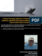 Oviedo L. et al. (2011). Critical foraging habitats of pantropical spotted dolphins (Stenella attenuata graffmani) in a tropical fjord