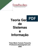 Teoria Geral de Sistemas e Informacao - - Thata.pdf