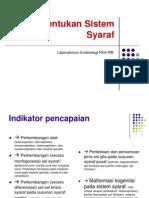 08. Perkembangan Sistem Syaraf Rev Anto