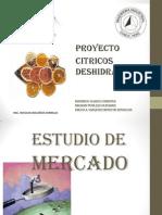 CITRICOS DESHIDRATADOS