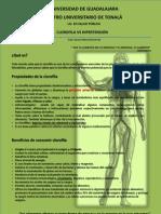 Clorofila vs Hipertension