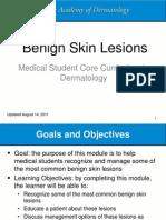 benign-skin-lesions-module.ppsx