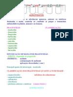 AULA 2-AGROTÓXICO