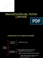 tejido linfoide