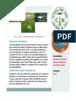 noticia basura.pdf