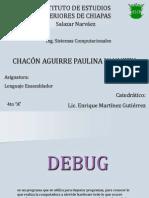 debugpaulinachacon-1222023008337787-9