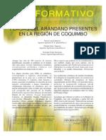 Read Plagas del arandano
