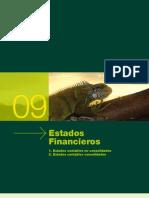 Estados Financieros 09