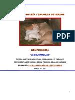 Proyecto Cerdos La Bugambilia