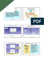 3_farmacocin.pdf