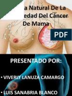 Historia Natural De La Enfermedad Del Cáncer De