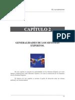 Sistemas Expertos y Sus Aplicaciones 15-28